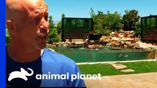 Brett's Backyard Tank Is Fit For The Big Screen! | Tanked