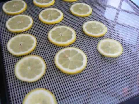 Dehydrated Lemons & Oranges using my Excalibur food dehydrator