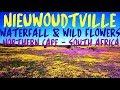 Nieuwoudtville Waterval en Blomme