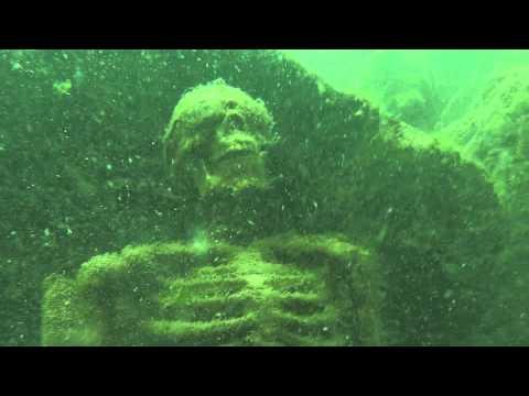 Skeletal remains found having underwater tea party