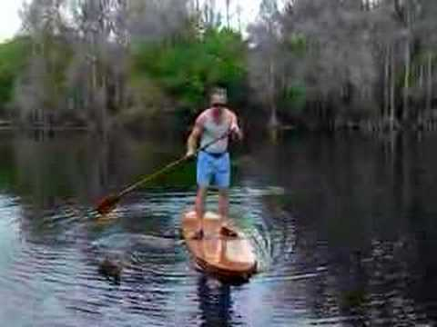 Stand Up Paddle Boarding the Hillsborough River Tampa Fl