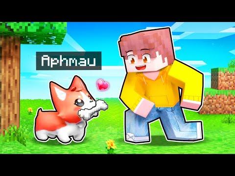 5 Minecraft Puppy PRANKS To Help Your FRIENDS!
