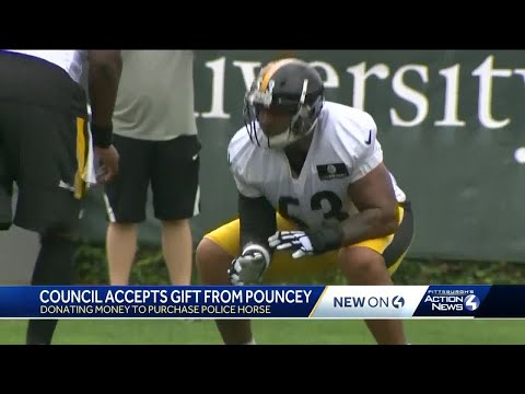 Steelers' Maurkice Pouncey donates money for new Pittsburgh police horse
