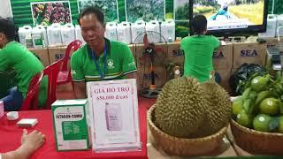 CT Hữu Cơ Thuận Thiên tham gia Hội chợ ở Buôn Ma Thuột, Đắk Lắk