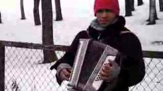 Norwegian Accordion Player