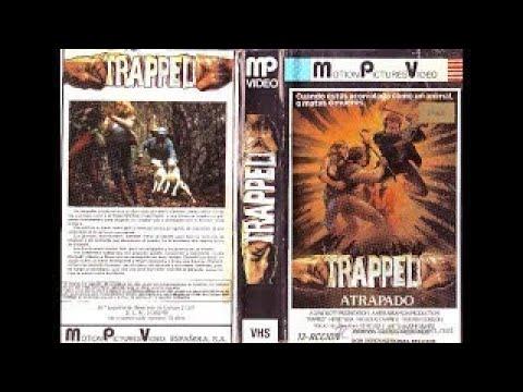 Atrapado (Trapped) - Castellano - 1982
