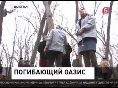 Активисты Народного Фронта приехали с проверкой в Самурский заказник на юге Дагестана
