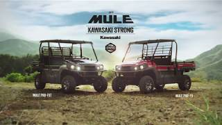 9. 2019 MULE PRO-FXT (EPS LE) - Day On The Ranch
