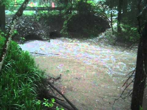 Spring rain in Highland Village, Tx Part 2
