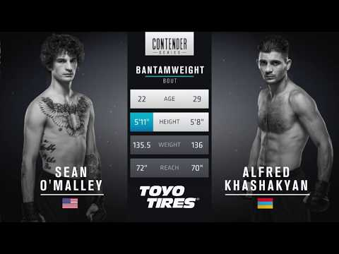 FREE FIGHT | Sean O'Malley Scores Impressive KO | DWTNCS Week 2 Contract Winner - Season 1