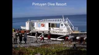 Pintuyan Philippines  city photos gallery : Pintuyan Dive Resort