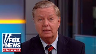 Lindsey Graham talks immigration, midterms, Warren DNA test
