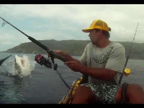 Kajakfiske med haj på kroken