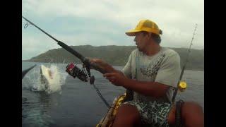 Chompy the Shark caught off kayak!
