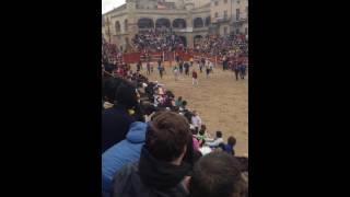Ciudad-Rodrigo Spain  city images : Massive Hit at Bullfight in Ciudad Rodrigo, Spain