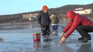 Зимняя рыбалка. Владивосток, 08.12.2013, ДР,корюшка, махалки.