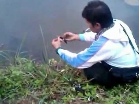 Mancing gabus Tasikmalaya #2