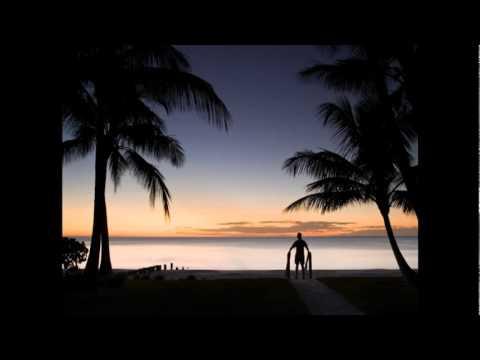 Nu - This Land (Remix for Bob Dylan) (видео)