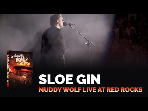 Sloe Gin (Live)
