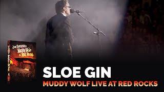 "Video Joe Bonamassa - ""Sloe Gin"" - Muddy Wolf at Red Rocks MP3, 3GP, MP4, WEBM, AVI, FLV Maret 2019"