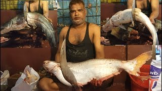 He is the best Bengali style fish chopping guy in fish market Noya Bazar Dhaka Bangladesh. So please don't compare with Japanese or others culture fish cutting with this guy.  Within 10 min only he cut 3 big fish. 12.5 KG Pangash fish and 9 KG Wallago Fish and 9.3 KG Big Long Whikers Catfish slice into small small pieces. For this 3 fish slicing he got 450 BDT ( About 6 USD) as charge. He is working last 26 years in this fish market as fishmonger to cut/slice customer fish. Please subscribe to get more video update daily.