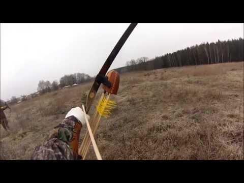 Охота на фазана с луком
