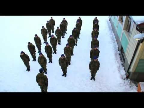 Тем временем в норвежской армии / видео