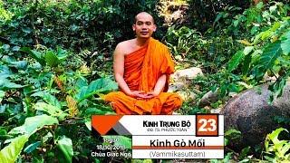 KINH TRUNG BỘ 23: KINH GÒ MỐI (Vammikasuttam) - SƯ PHƯỚC TOÀN