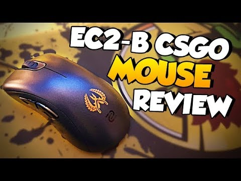 ZOWIE EC2-B CS:GO Version mouse for esports (Review)