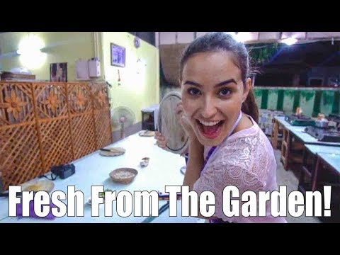 Chiang Mai Cooking Class Review! - Classic Home Cooking School