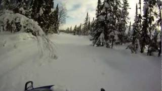 3. Bearcat 570 breaks trail for a Skandic, RMK700, Panther, and three Polaris sleds in Alaska