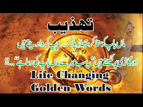 Short quotes - Urdu Hindi Life Changing Quotes  Best Quotations  Famous Quotes Collection  Golden Words  Quotes