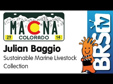 Sustainable Wild Collection of Australian Fish and Corals by Julian Baggio | MACNA 2014