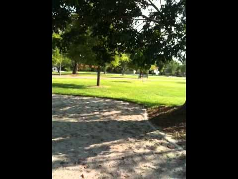 Village Of Kendale Park , Miami 33176, Guillermo Fernandez