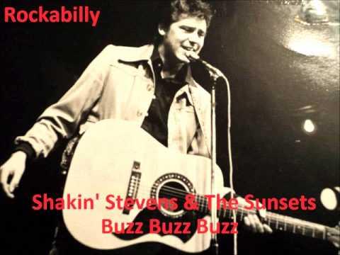 Tekst piosenki Shakin Stevens - Buzz Buzz Buzz po polsku