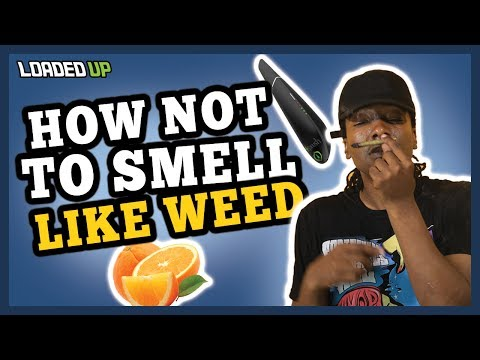 Weed Code How To Not Smell Like Weed