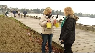Watch: 2016 Parksville Beach Festival Theme - Shaw TV Nanaimo