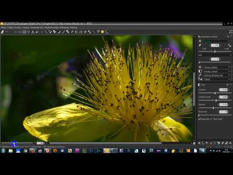 Adjusting Highlights and Shadows in Silkypix
