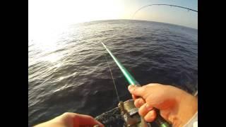 Video Pesca embarcada Peniche barco Mestre Inácio. MP3, 3GP, MP4, WEBM, AVI, FLV Desember 2017
