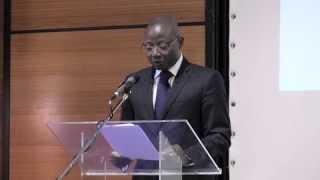 Camille Lawson - Conférence Synergie-Togo 2013: Mascarades électorales en Afrique – Cas du Togo