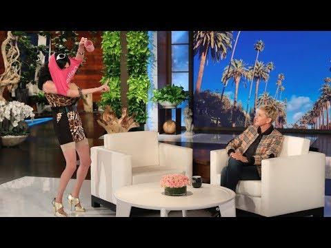 Cat Week Spokesmodel Gina Shows Off New Ellen Shop Items!