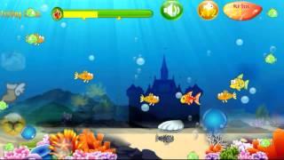 Cá Lớn Nuốt Cá Bé YouTube video
