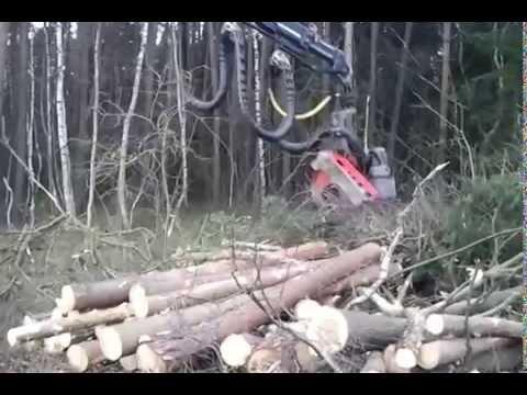Harvester WFW Bagger-Harvester Bayern Forstbetrieb Haneder