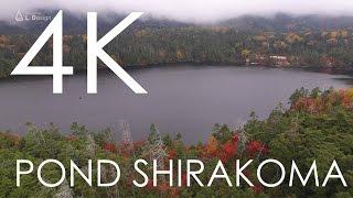 秋の白駒池と、夏の白駒池の空撮映像