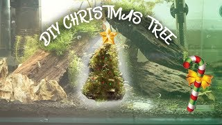 HOW TO: MOSS CHRISTMAS TREE FOR AQUARIUM! by  Challenge the Wild