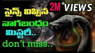 Video Nagabandam | Kerala Ananthapadmanabha swamy temple Treasure Nagabandam Mystery Revealed|aadhitv MP3, 3GP, MP4, WEBM, AVI, FLV Maret 2019