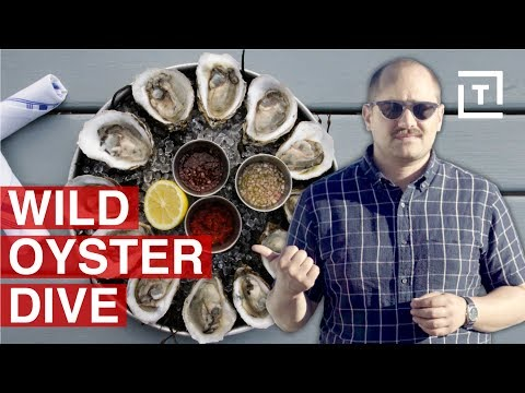 Why Long Island has New Yorks's Freshest Seafood…