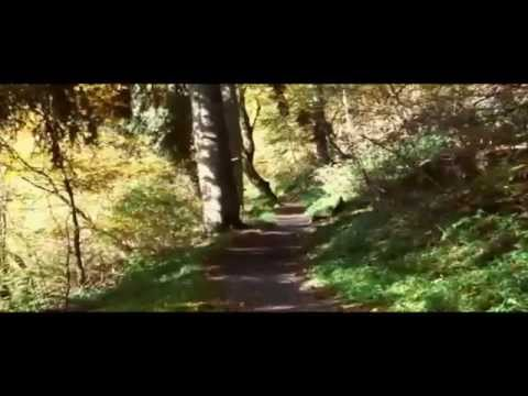 Youtube Video q0F8rHDeo1c