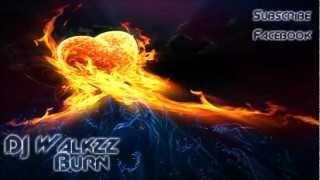 Download lagu Alan Walker Burn Mp3