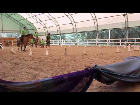 Mahan Farm Trick Riding and Vaulting Camp 2014